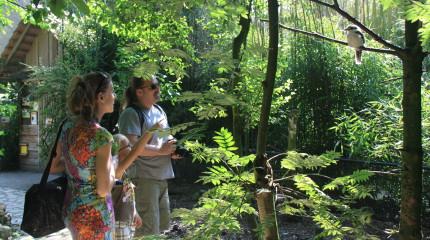 Taman Indonesia dichtbij groepsaccommodatie